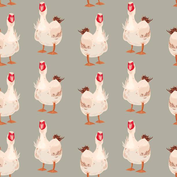 Moscovy Duck Seamless Pattern Moscovy Duck Seamless Pattern. Vector illustration. american pekin duck stock illustrations