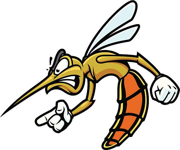 Mosquito Bandito vector art illustration