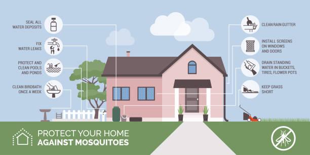 illustrazioni stock, clip art, cartoni animati e icone di tendenza di mosquito bite prevention infographic - zanzare