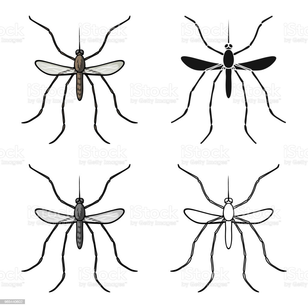 Mosquito icon in cartoon style isolated on white background. Insects symbol stock vector web illustration. royalty-free mosquito icon in cartoon style isolated on white background insects symbol stock vector web illustration stock vector art & more images of animal