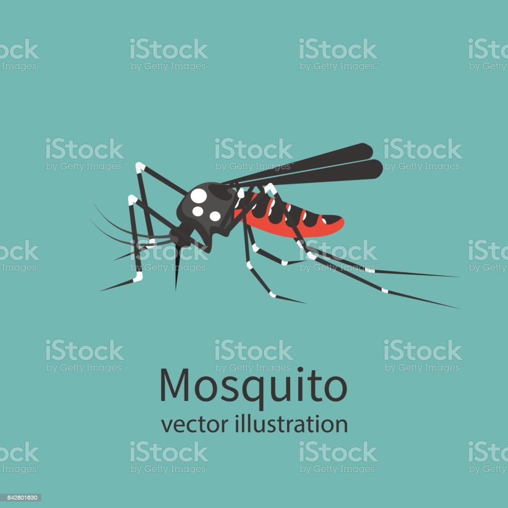 Mosquito icon isolated on background. vector art illustration