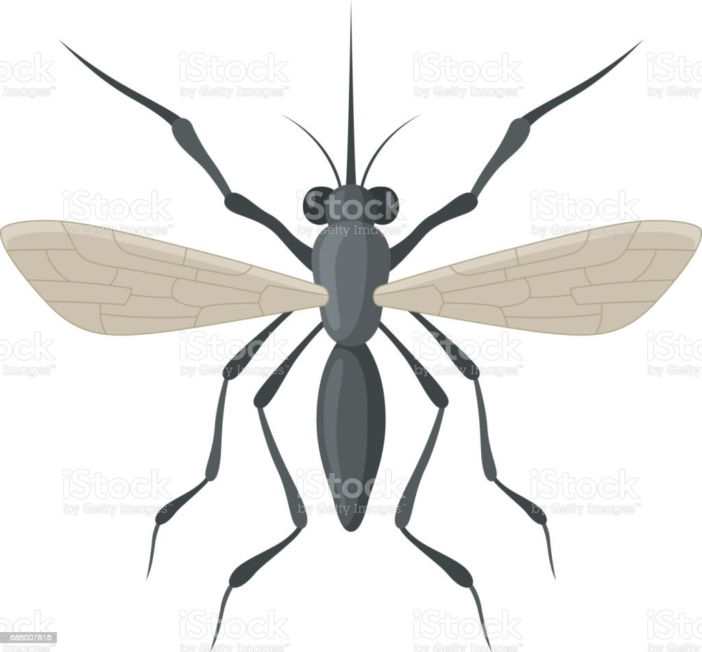 Mosquito icon isolated on white background vector art illustration
