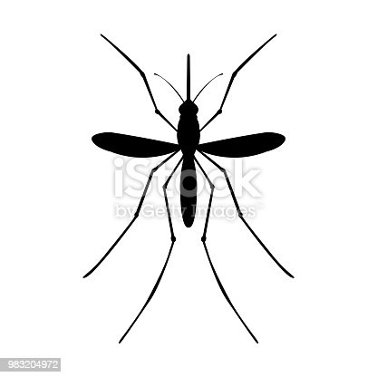 Mosquito icon . Mosquito black image on white background, top view