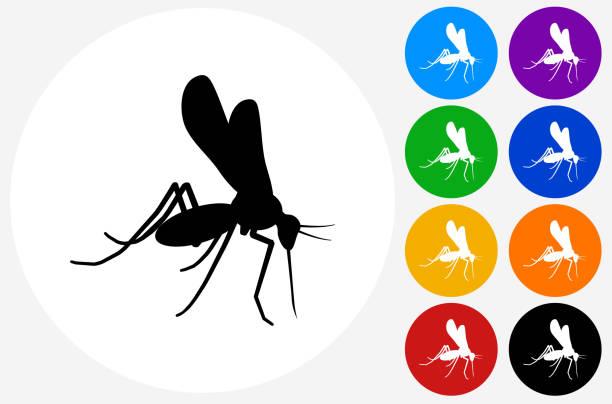 illustrazioni stock, clip art, cartoni animati e icone di tendenza di mosquito icon on flat color circle buttons - zanzare