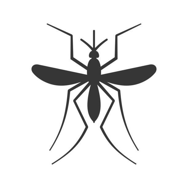 illustrazioni stock, clip art, cartoni animati e icone di tendenza di mosquito icon on white background. vector - zanzare