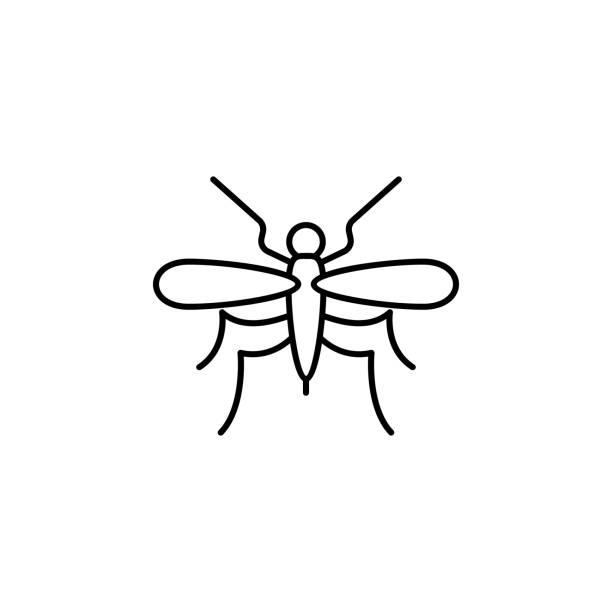 mückenlinie-symbol. element des dschungels für mobiles konzept und web-apps illustrati - mückenfalle stock-grafiken, -clipart, -cartoons und -symbole
