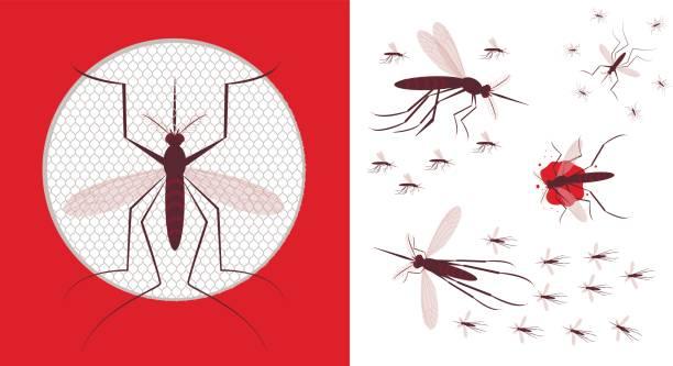 illustrazioni stock, clip art, cartoni animati e icone di tendenza di mosquito net icon. flock of gnat - zanzare