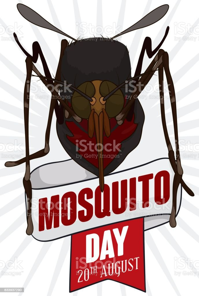 Mosquito over a Ribbons to Commemorate World Mosquito Day vector art illustration