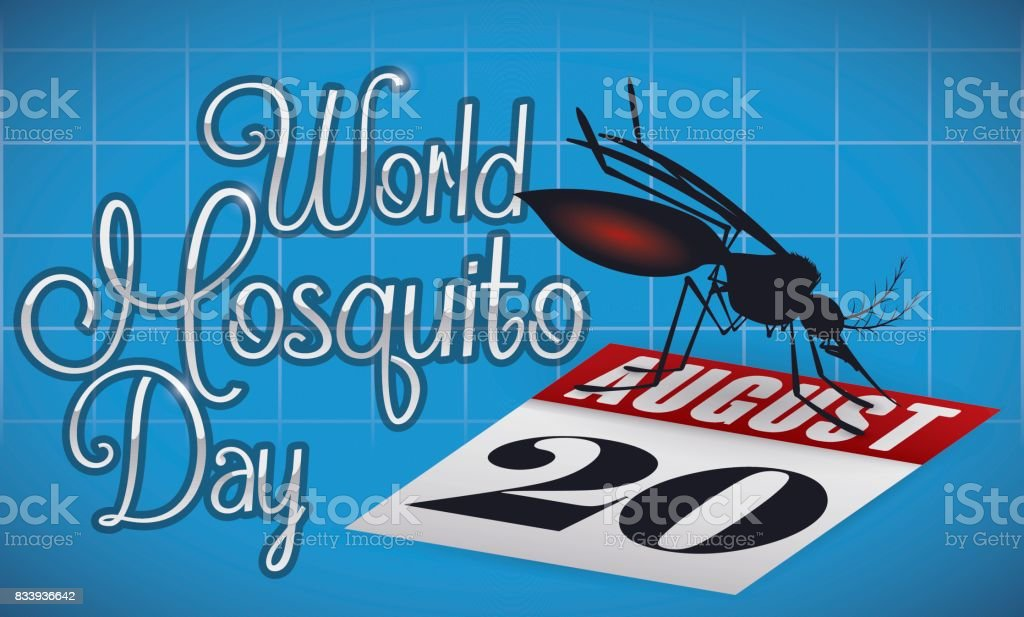Mosquito Posed in a Loose-leaf Calendar Commemorating World Mosquito Day vector art illustration