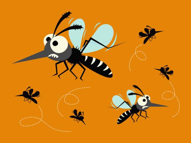 illustrazioni stock, clip art, cartoni animati e icone di tendenza di mosquito set isolated on orange background. - zanzare
