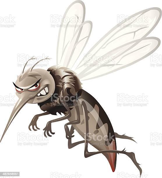 Mosquito vector id482658551?b=1&k=6&m=482658551&s=612x612&h=z0ragzrtci11vimyxofkh 5xghofb5uhswyc9bx2wzg=