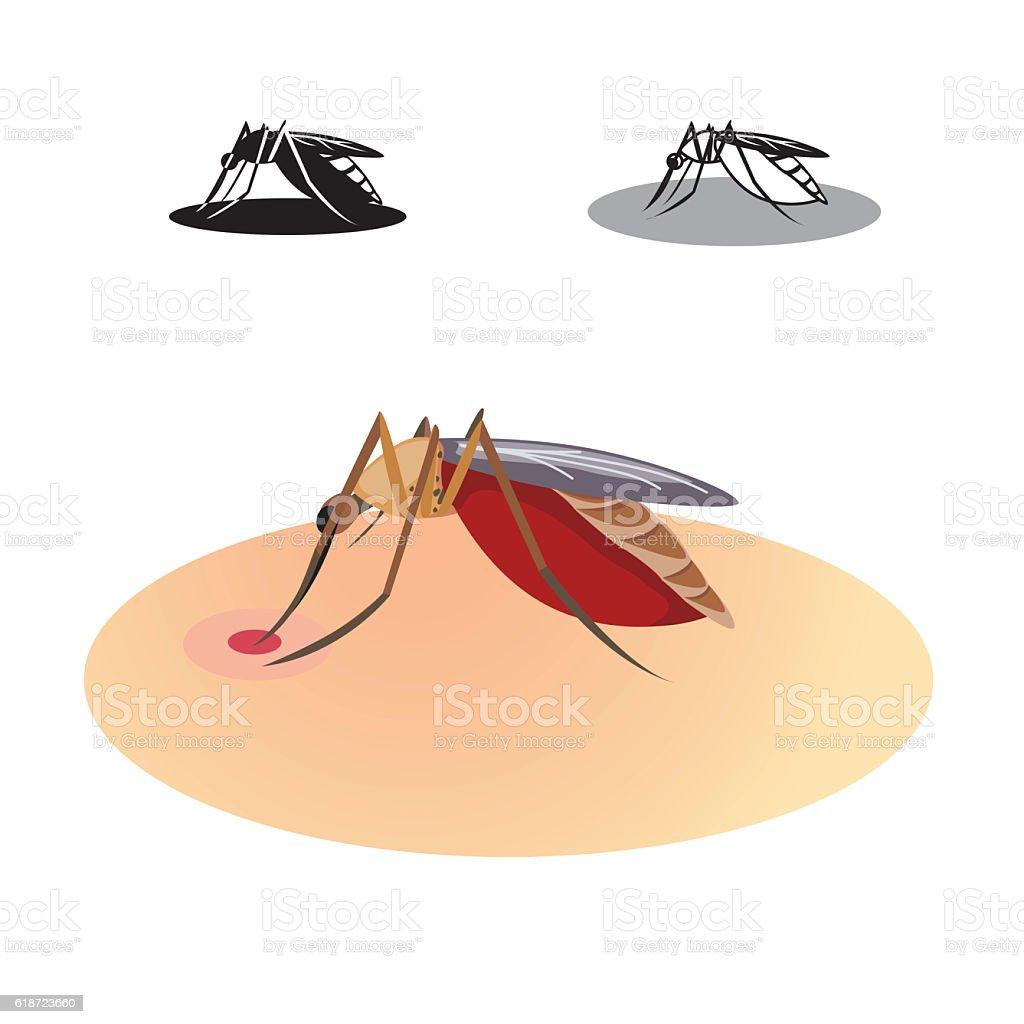 mosquito vector art illustration