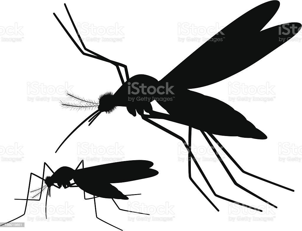 Mosquitoes silhouette pair vector art illustration