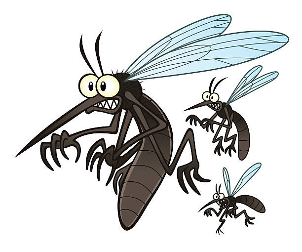 mosquitoes Vector illustration of flying three cartoon mosquitoes. fly insect stock illustrations