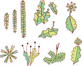 Moss elements collection. Set of color doodle plants and branche