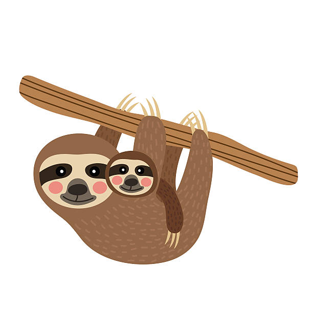 Royalty Free Baby Sloth Clip Art, Vector Images ...