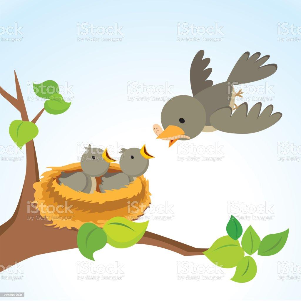 Mother bird feeding baby birds vector art illustration