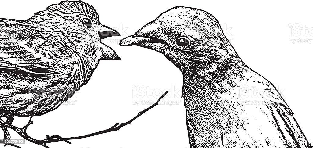 Madre Pulcino Di Uccello Alimentazione Immagini Vettoriali Stock E