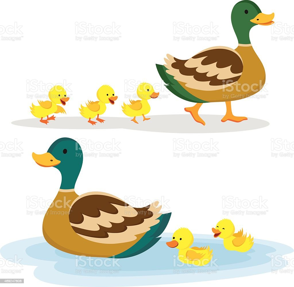 Mother duck and ducklings vector art illustration