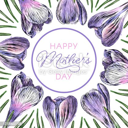 istock Mother's Day Border of Crocus Flowers Watercolor and Ink Vector Illustration 1215802708