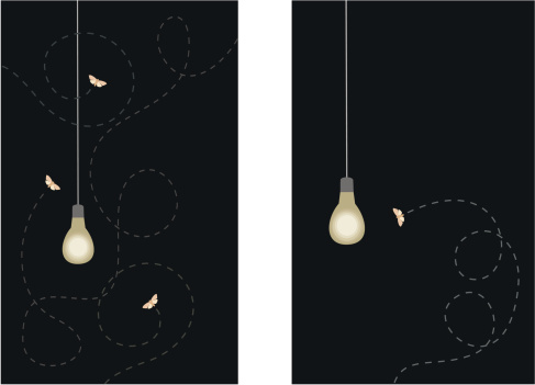 Moths and Lightbulb