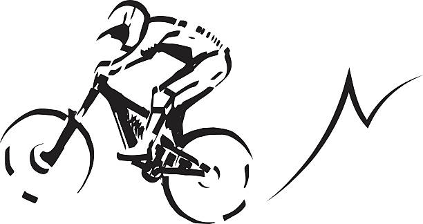 Mountain biker illustration. vector art illustration