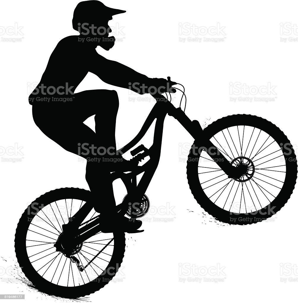 mountain biker royalty free stock vector art