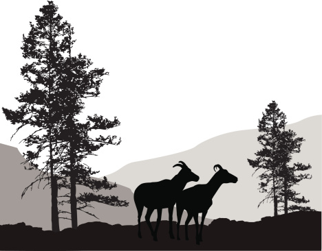 Mountain Critters Vector Silhouette
