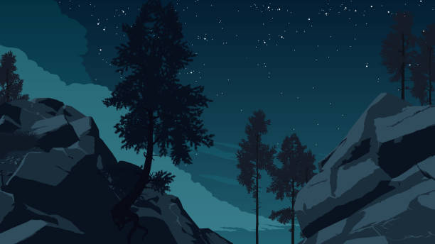 mountain forest landscape illustration mountain forest landscape flat color illustration at night time cliff stock illustrations