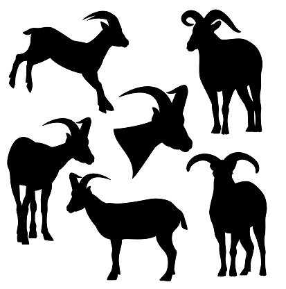 mountain goat black and white vector silhouette set