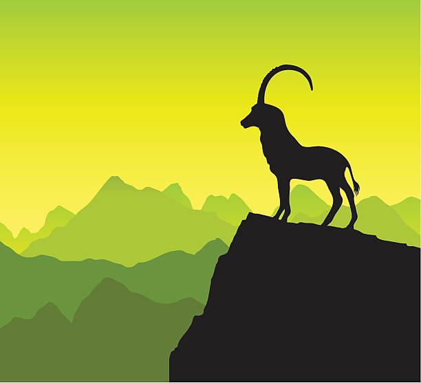 mountain goat-silhouette - bergziegen stock-grafiken, -clipart, -cartoons und -symbole