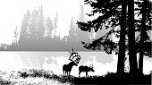 Elk and deer roaming by the water's edge