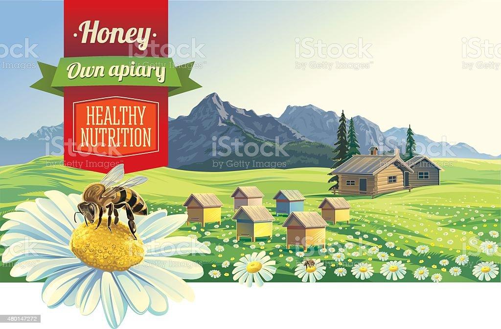 Paysage de montagne avec une abeille. - Illustration vectorielle