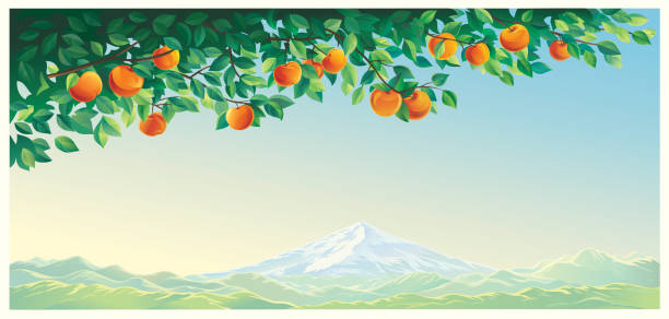 Mountain landscape with an apple branch vector art illustration