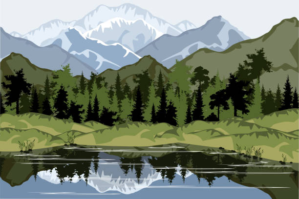 Mountain landscape with forest and lake, vector illustration. Mountain landscape with forest and lake, vector illustration. black white snow scene silhouette stock illustrations