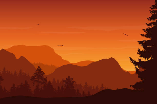 Mountain landscape with forest, under a orange sky with flying birds and clouds Mountain landscape with forest, under a orange sky with flying birds and clouds autumn silhouettes stock illustrations