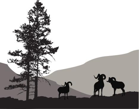 Mountain Mammals Vector Silhouette