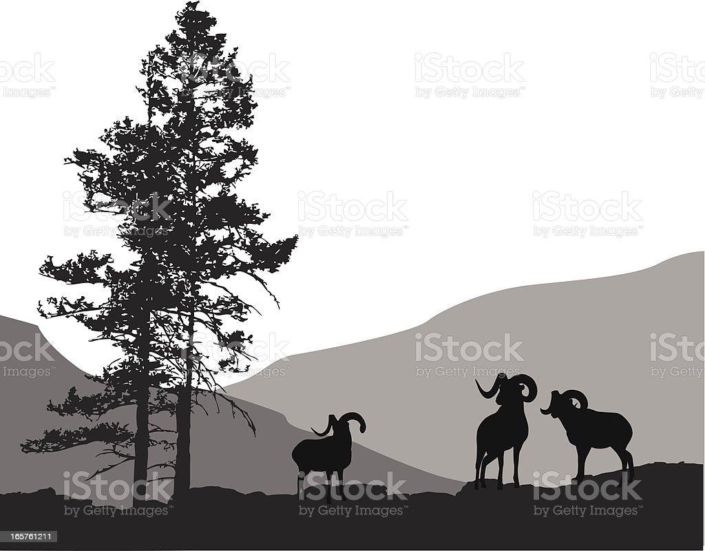 Mountain Mammals Vector Silhouette vector art illustration