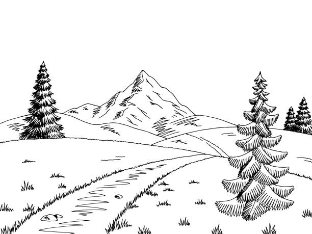 Best Scenic Path Illustrations, Royalty-Free Vector