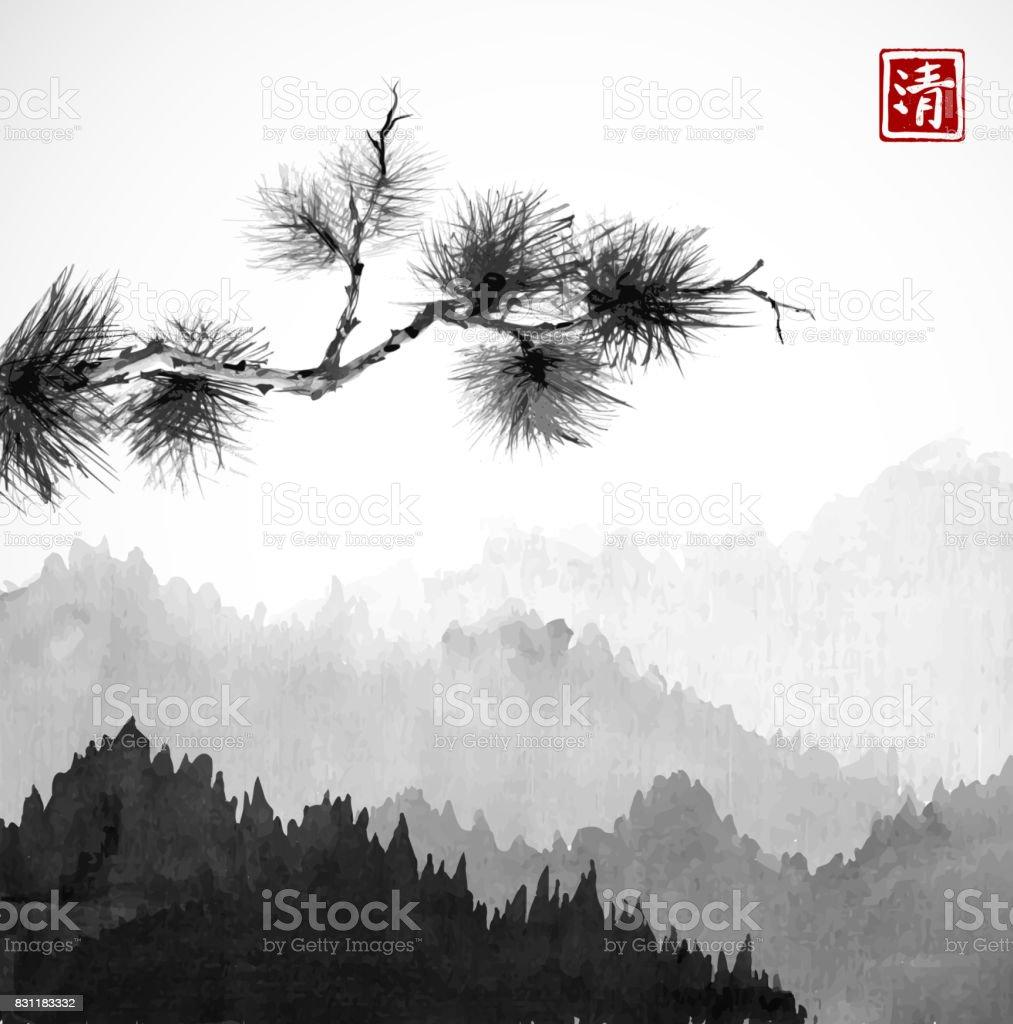 Dağları Sis Ve çam Ağacı Dalında Orman Ağaçları Ile Hiyeroglif