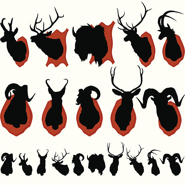 Mounted Animal Heads Silhouette Set ZOOM IN to check out the detail. This illustration is perfect for a variety of different design projects. This file has been layered and grouped for easy editing. This file includes a large JPG file, an ai V10 file, and an eps file. stuffed stock illustrations