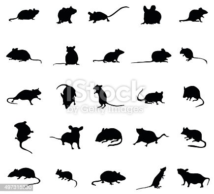 istock Mouse silhouettes set 497315330