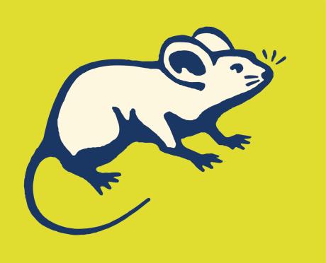 Mouse向量圖形及更多一隻動物圖片