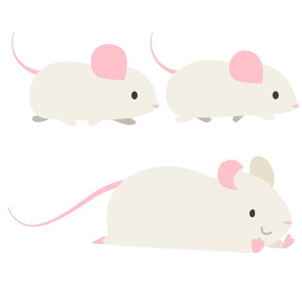 マウスの歩行 ベクターアートイラスト