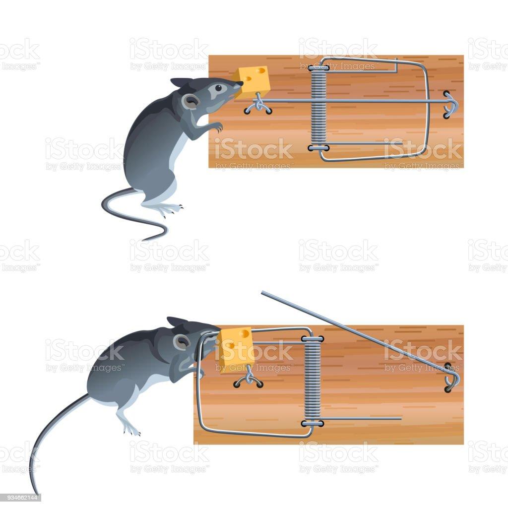 Trampa Para Ratones En Acción - Arte vectorial de stock y más ...