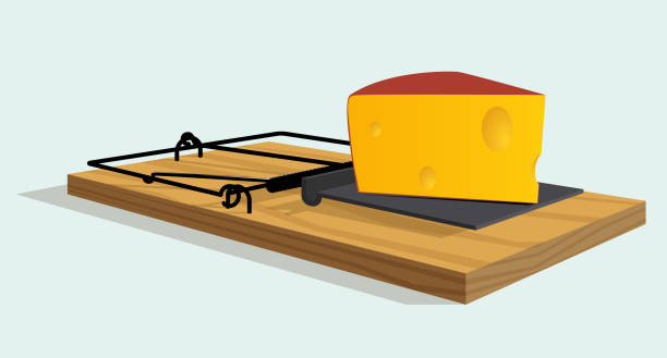 illustrazioni stock, clip art, cartoni animati e icone di tendenza di mousetrap with cheese - trappola