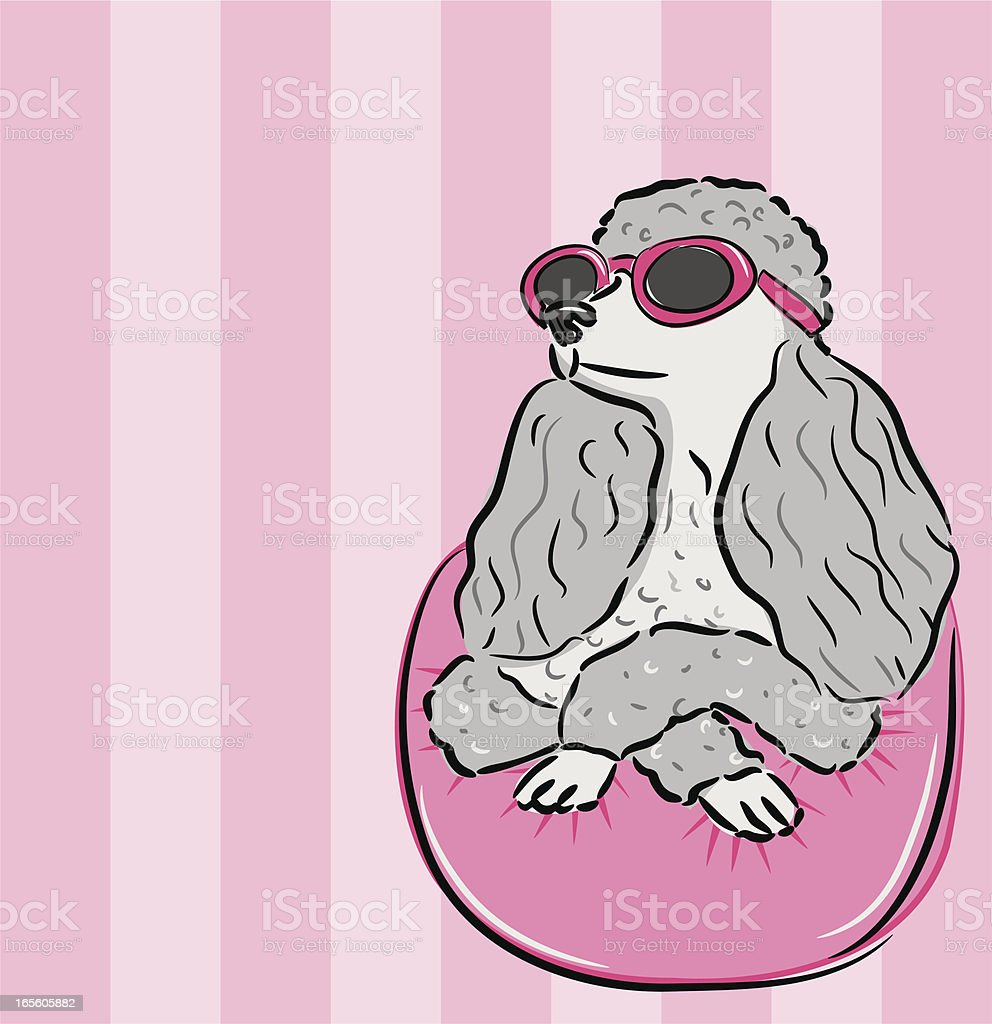 Movie Star Poodle Posing - Illustration royalty-free stock vector art
