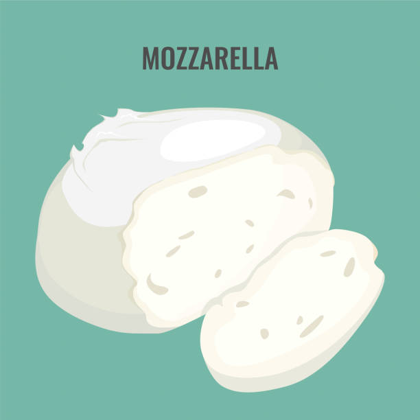 Mozzarella cheese big piece isolated on blue background. Mozzarella cheese big piece isolated on blue background. Gourmet cottage cheese, large delicatessen dairy product vector illustration on blue mozzarella stock illustrations