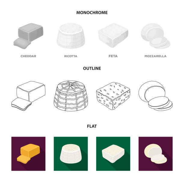 Mozzarella, feta, cheddar, ricotta.Different types of cheese set collection icons in flat,outline,monochrome style vector symbol stock illustration web. Mozzarella, feta, cheddar, ricotta.Different types of cheese set collection icons in flat,outline,monochrome style vector symbol stock illustration . mozzarella stock illustrations