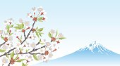 Mt.Fuji and Cherry Blossom branch
